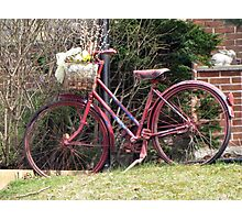 Spring Ride Photographic Print