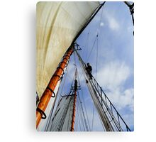 ☜ ☝ ☞ VIEW FROM LOOKING UP THE MASK☜ ☝ ☞ Canvas Print