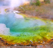 Rainbow geyser of color by Erika Price