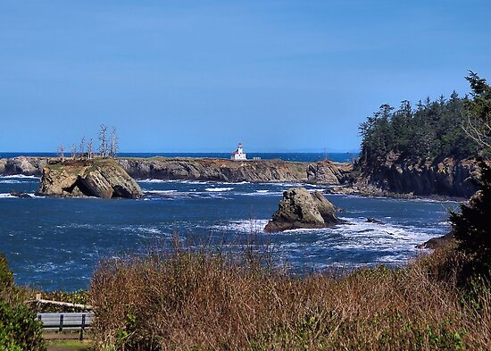 The Light House at Cape Arago  by Don Siebel