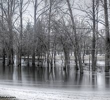 Fort Qu'appelle flooded land by Erykah36