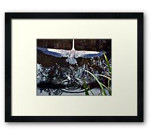 Great Blue Heron Taking Off - Beauty In Motion Framed Print