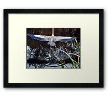 Great Blue Heron Taking Off - Beauty In Motion Framed Print