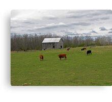 A Day on the Farm Canvas Print