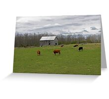 A Day on the Farm Greeting Card