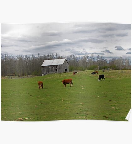 A Day on the Farm Poster