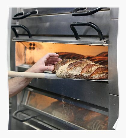 Loaves of bread in an oven.  Poster