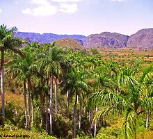 Vinales valley by Erykah36