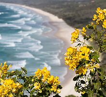Tallow Beach - Byron Bay by Daniel Rankmore