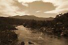 Snowy River NSW - Sepia Toned HDR by Matt  Carlyon
