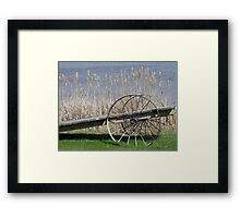 Cat Tails & Wagon Wheels Framed Print
