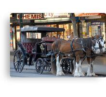 Melbourne Horses Canvas Print