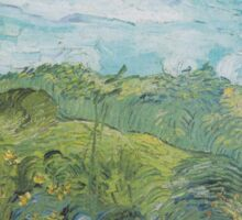 Field with Green Wheat by Vincent van Gogh Sticker