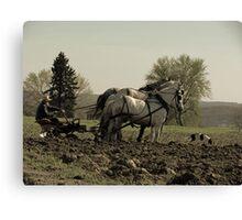 Tilling the Fields Canvas Print