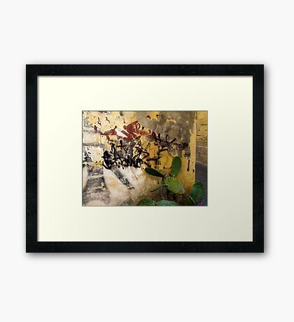 Graffiti and the Cactus in Lecce Framed Print