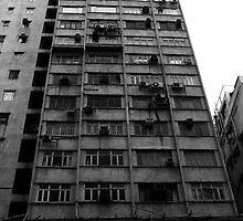 HK Home by Pat Lynch