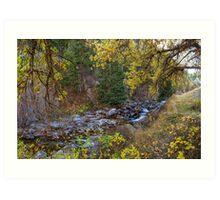 Boulder Creek Autumn View  Art Print