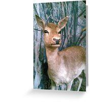 Animal Interlude #2 Greeting Card