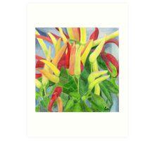 Chillies Art Print