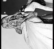 Alien Bride by TexasBarFight