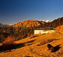 Chopta Himalayan view ............. by Sudheerhegde