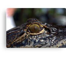 You Have Alligator Eyes! Canvas Print