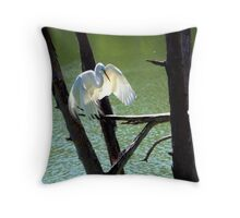 Look at me Baby! Throw Pillow