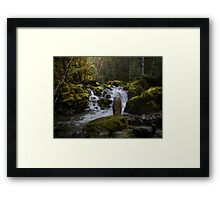 What A Rush Framed Print