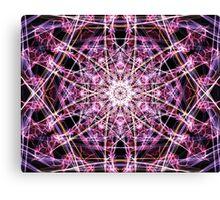 Pink Web  Canvas Print