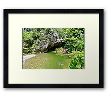 Garden of Eden Framed Print