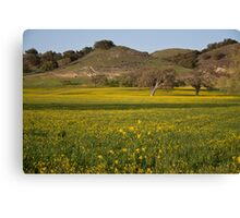 Spring in Santa Ynez Canvas Print