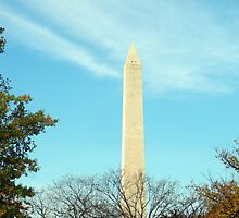 """""""The Washington Monument"""" by mls0606"""
