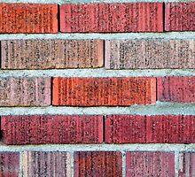 Red Brick Wall by Henrik Lehnerer