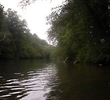 """The Chestatee River by Micah Samter"