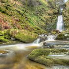 WATERFALL! by tim williams