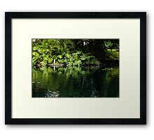 Green Tropical Paradise - the Gardens of the Museum of Art of Puerto Rico Framed Print