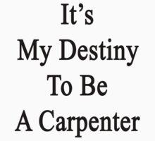 It's My Destiny To Be A Carpenter by supernova23