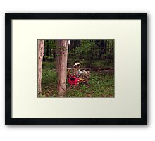 Hobby Horse in an Unlikely Place (VINTAGE 1950s WONDER ROCKING HORSE) Framed Print