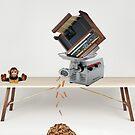 Organ grinder by Susan Littlefield