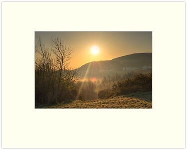 A Misty Groudle Sunrise by Sammie Caine
