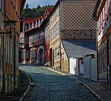 Cobble Stone Alley by herbspics