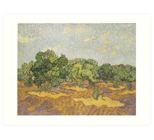 Olive Orchard (2) by Vincent van Gogh Art Print