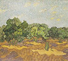 Olive Orchard (2) by Vincent van Gogh by Robert Partridge