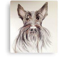 Scottish terrier – watercolour head study Canvas Print