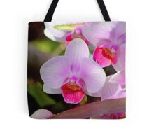 The Moth Orchid Tote Bag