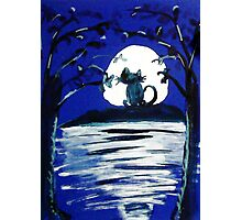 Yowling in the light of the Moon,,  watercolor Photographic Print