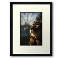 Good Morning:) Framed Print
