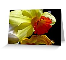 beauty on the darker side Greeting Card
