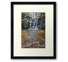 Cascade Falls: Patapsco Valley State Park MD Framed Print
