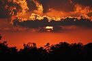 Sunset In Southeast Missouri by barnsis